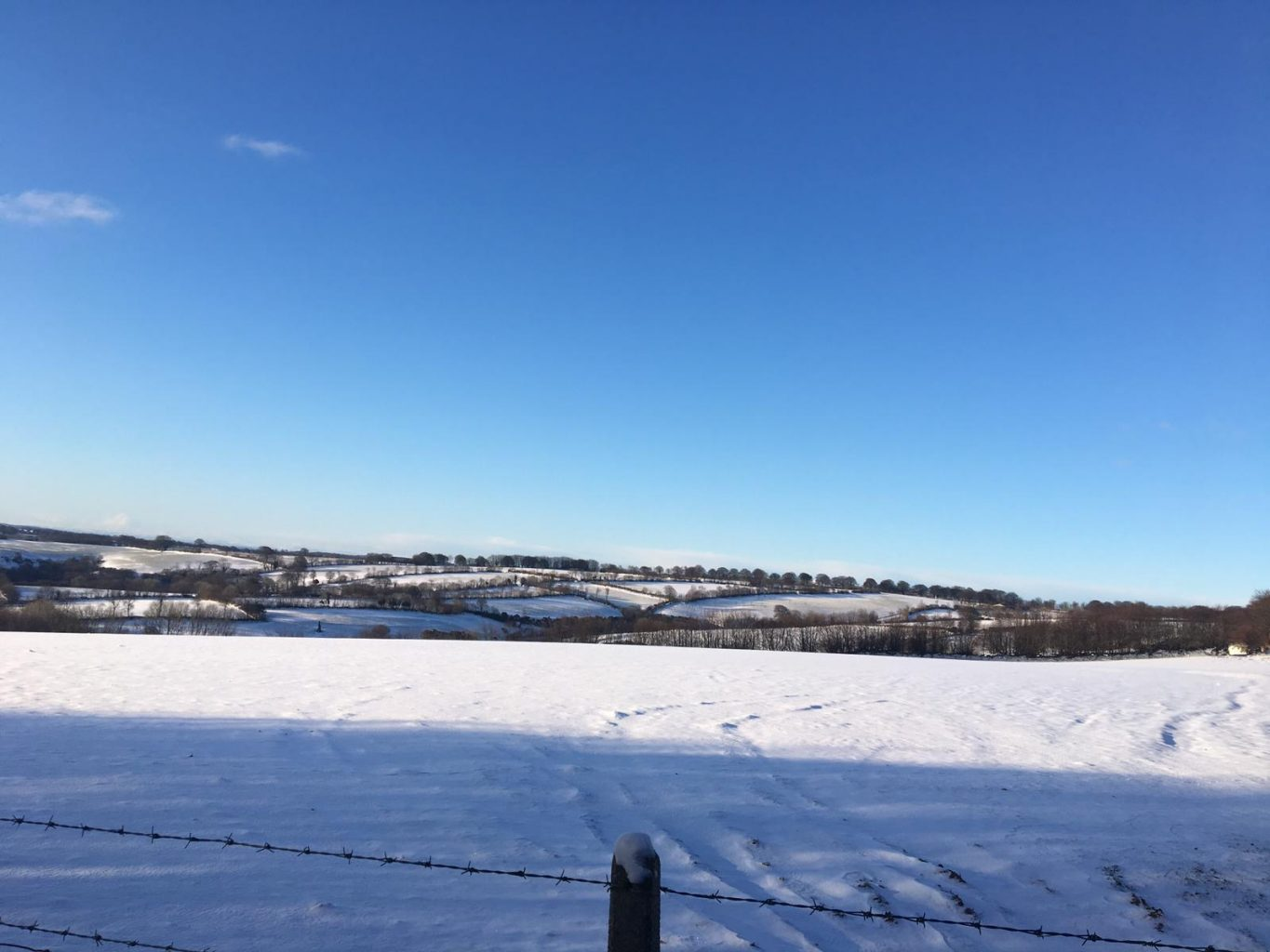 Winter on Stolford Farm