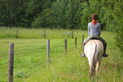 Horse Riding Holidays in Exmoor