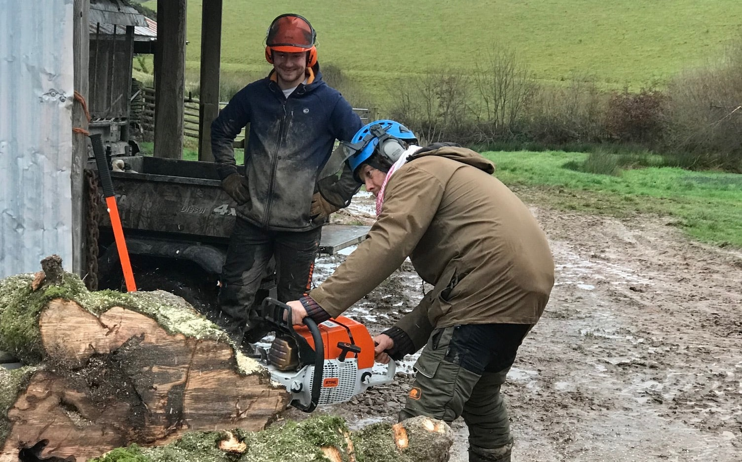 Log Cutting on Stolford